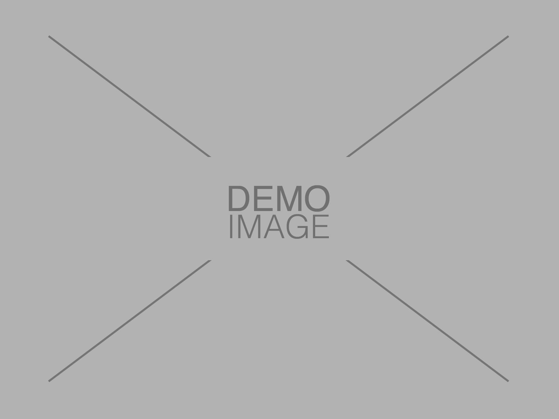 Demo Image 2